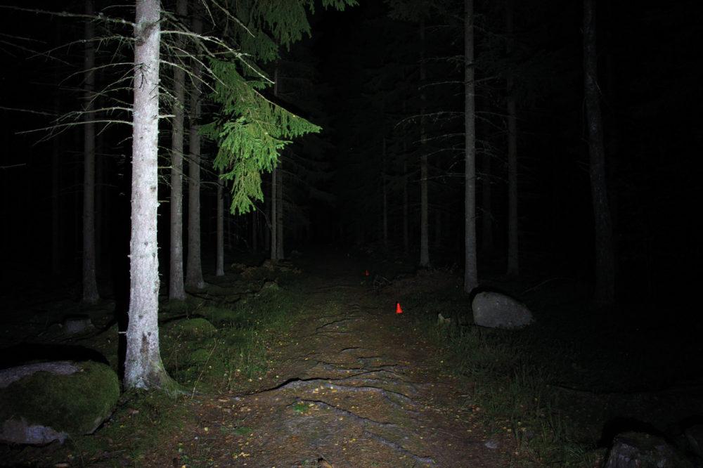 Ljuskäglan från den lilla smidiga Silva Trail Speed Elite