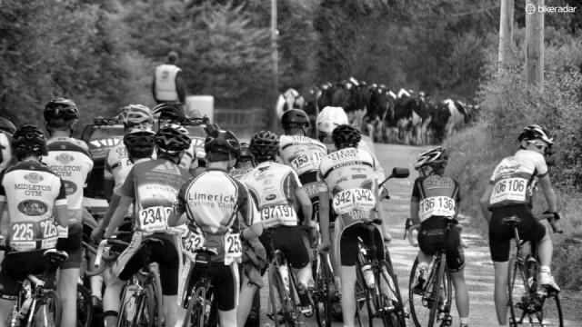 Låt inget stoppa dig från att bli en smartare cyklist - inte ens kor...