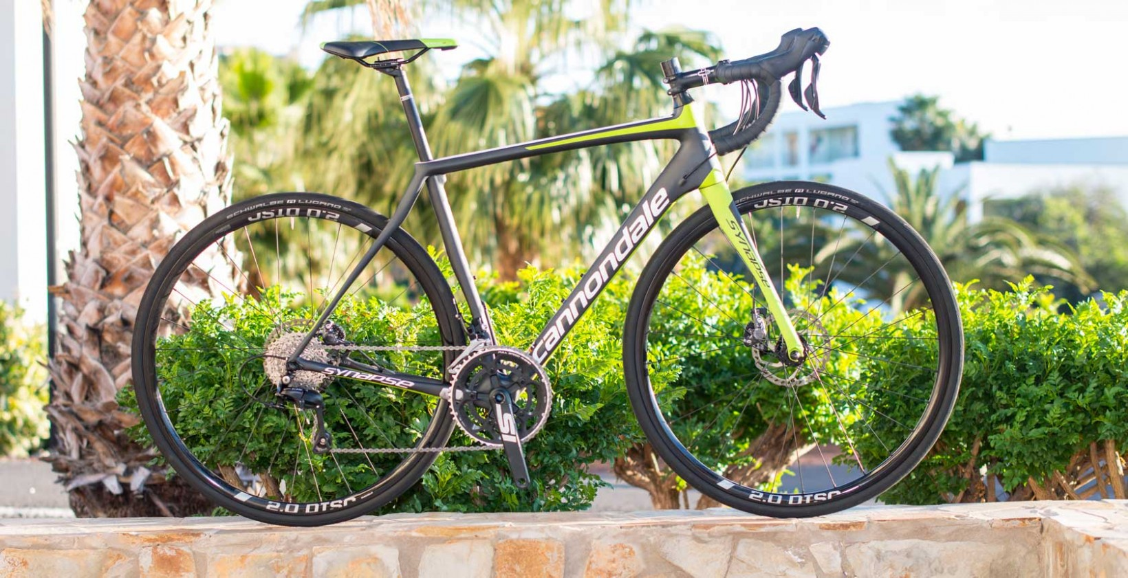 Cannondale-Synapse-Hel