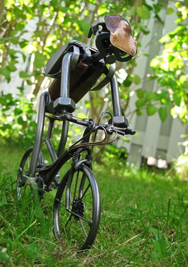 The Mountainbiker