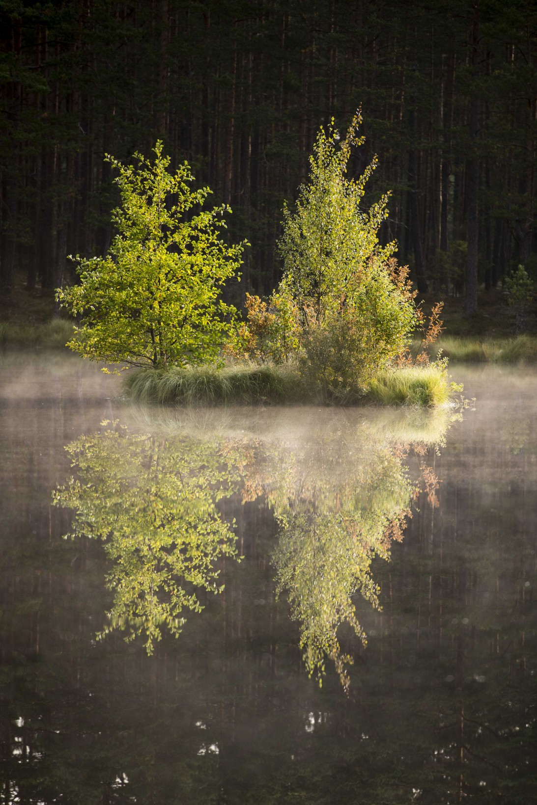 JAN_1765_JesperAnderssonPhotography