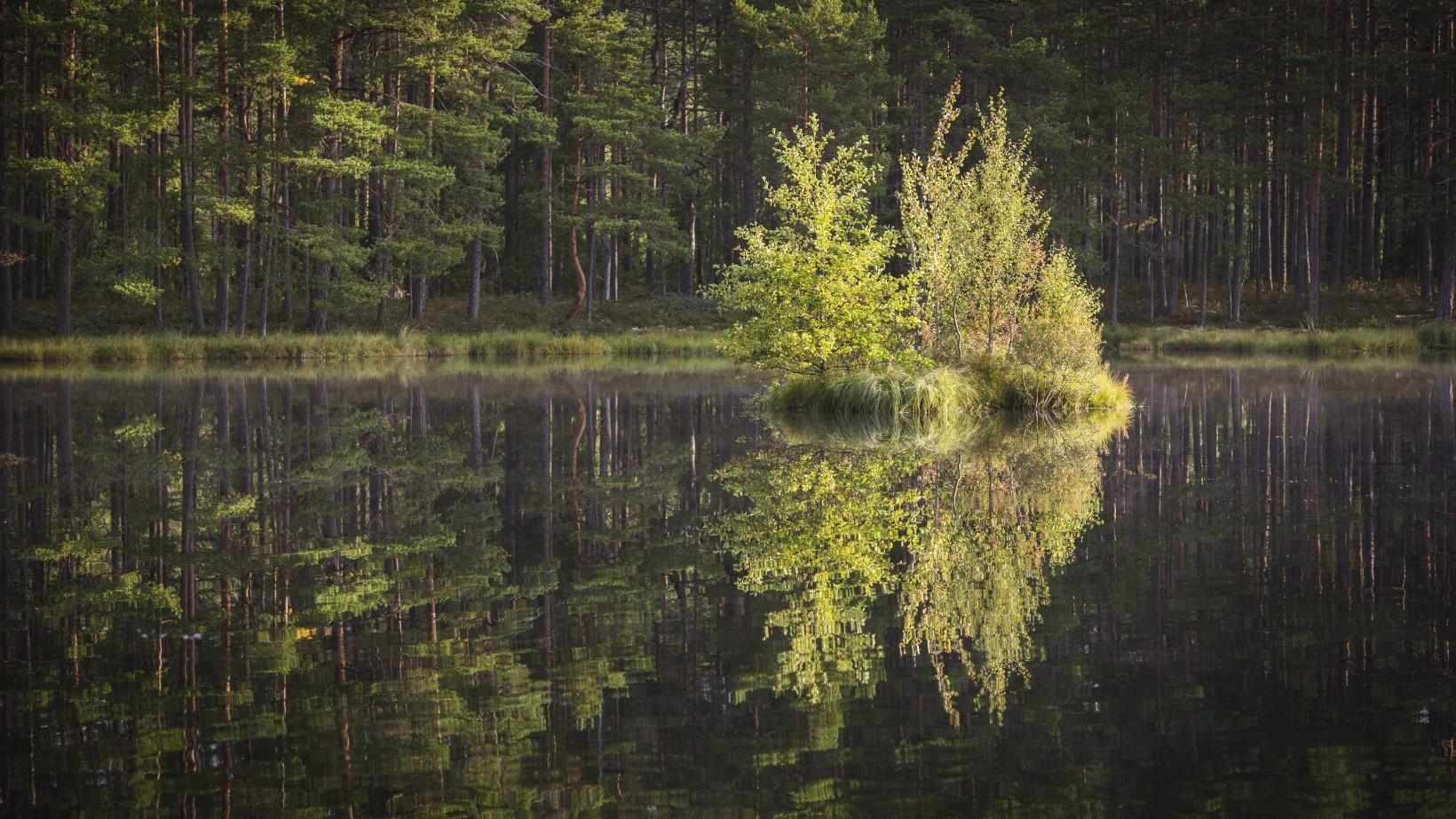 JAN_1804_JesperAnderssonPhotography