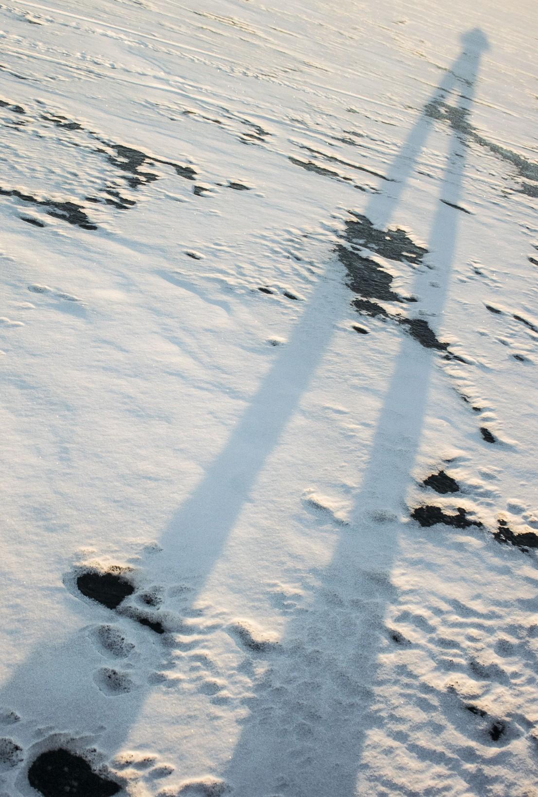 DSC_1648_JesperAnderssonPhotography3,7x2,5