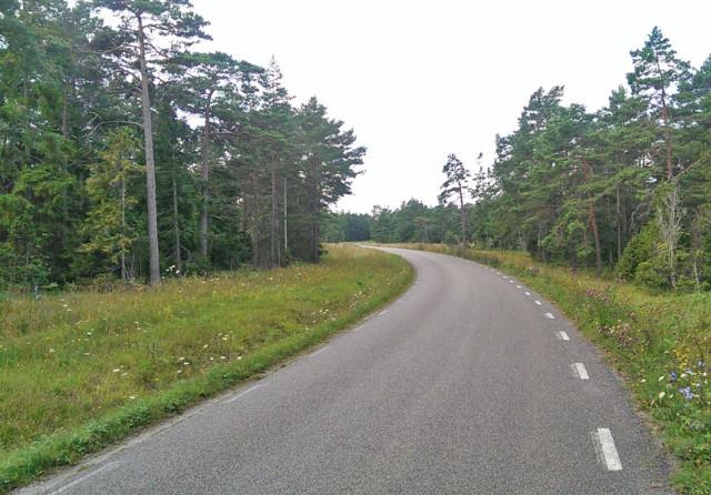 Sommarväg på Gotland för allt för länge sedan...