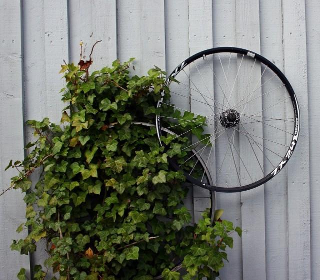 Jag kanske skulle cykla oftare...