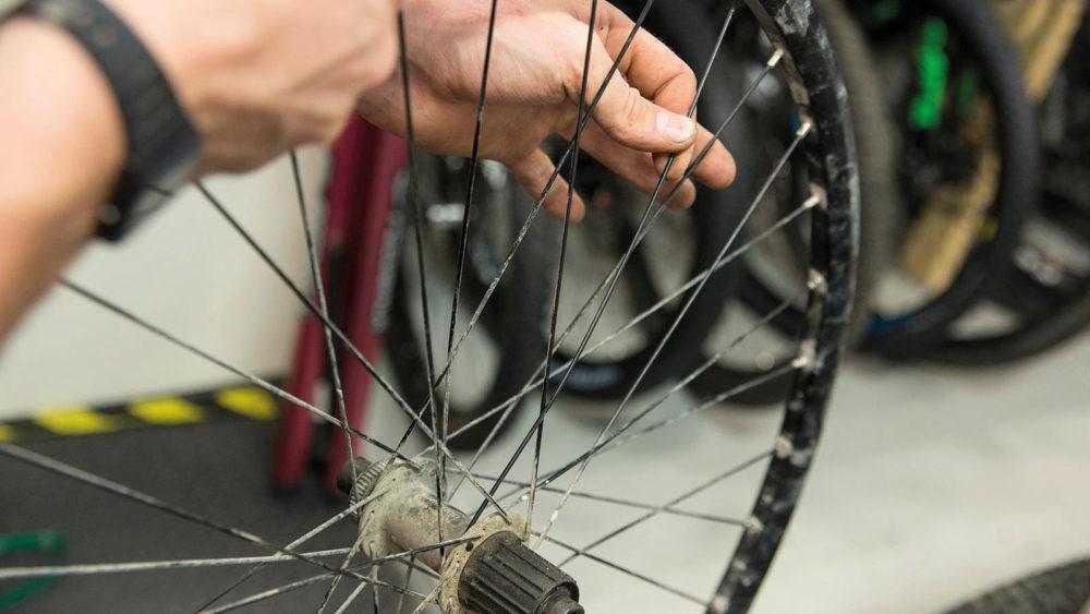 trasig eker cykelhjul